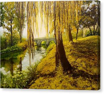 Under The Willow Canvas Print by Svetla Dimitrova