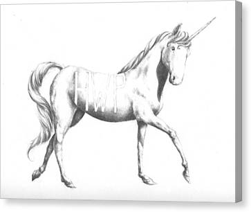 Unicorn Canvas Print by Alexander M Petersen