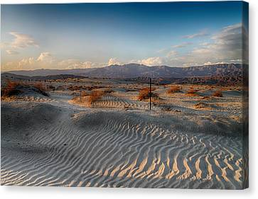 Unspoken Canvas Print by Laurie Search