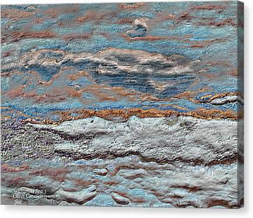 Untamed Sea 1 Canvas Print by Carol Cavalaris