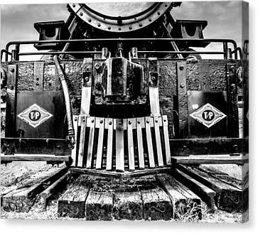 Up In My Grill B And W Canvas Print by Geoff Mckay