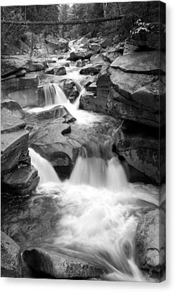 Upper Ammonoosuc Falls Black And White Canvas Print by Brett Pelletier