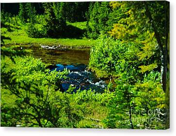 Upper Dewey Creek Canvas Print by Jeff  Swan