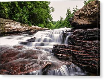 Upper Swallow Falls Close Up Canvas Print by Chris Flees