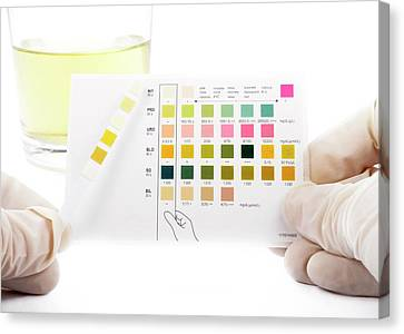 Urine Home Test Kit Canvas Print by Cordelia Molloy