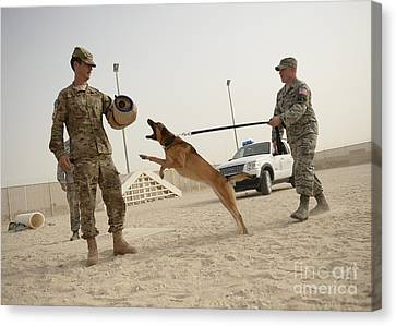 U.s. Air Force Soldier Takes A Bite Canvas Print by Stocktrek Images