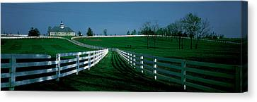 Usa, Kentucky, Lexington, Horse Farm Canvas Print by Panoramic Images