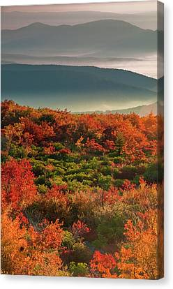 Usa, West Virginia, Dolly Sods Canvas Print by Jaynes Gallery