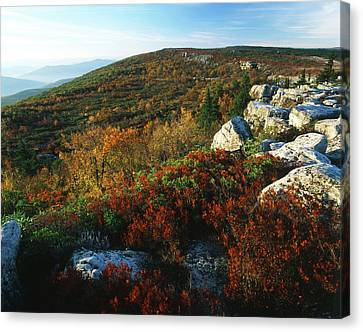 Usa, West Virginia, Monongahela Canvas Print by Adam Jones