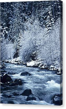 Usa, Willamette National Forest Oregon Canvas Print by Greg Vaughn