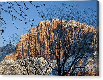 Utah Usa View Of The Watchman In Zion Canvas Print by Scott T. Smith