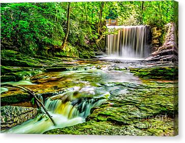Valley Waterfall  Canvas Print by Adrian Evans