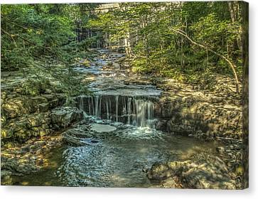 Vaughan Woods Stream Canvas Print by Jane Luxton