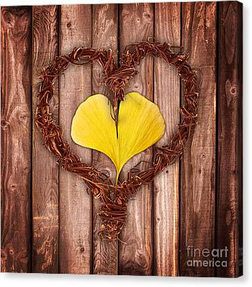 Vegetal Hearts Canvas Print by Delphimages Photo Creations