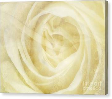 Veiled Beauty Canvas Print by Andrea Kollo