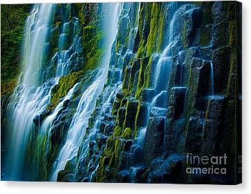 Veiled Wall Canvas Print by Inge Johnsson