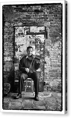 Venetian Violinist Canvas Print by Tom Bell