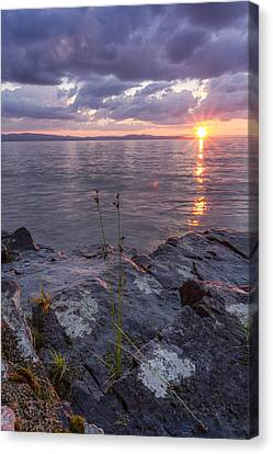A Stormy Surprise   Canvas Print by Andy Gimino