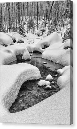 Vermont Winter Landscape Brook Forest Snow Canvas Print by Andy Gimino