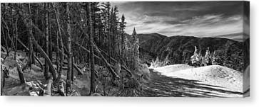 Vermont Winter Mount Mansfield Mountain Forest Snow Black And White Canvas Print by Andy Gimino