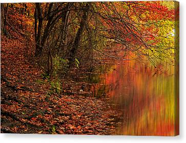 Vibrant Reflection Canvas Print by Lourry Legarde