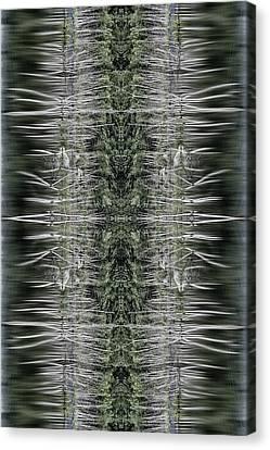 Vibrations Canvas Print by Dawn J Benko