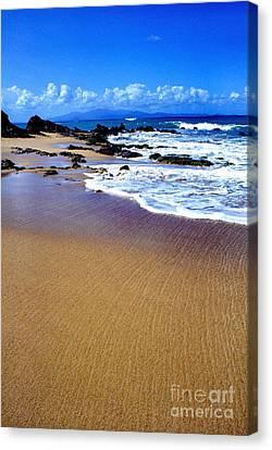 Vieques Beach Canvas Print by Thomas R Fletcher
