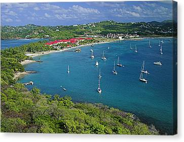 View From Fort Rodney-st Lucia Canvas Print by Chester Williams