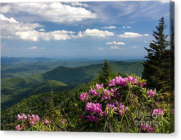 View From The Blue Ridge Parkway  Spring 2010 Canvas Print by Matthew Turlington