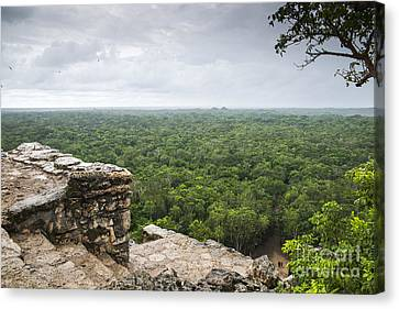 View From The Top Canvas Print by Yuri Santin