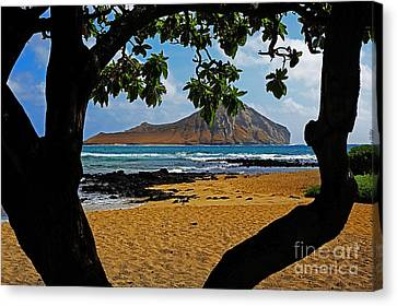 View Of  Manana Or Rabbit Island Canvas Print by Cheryl Young