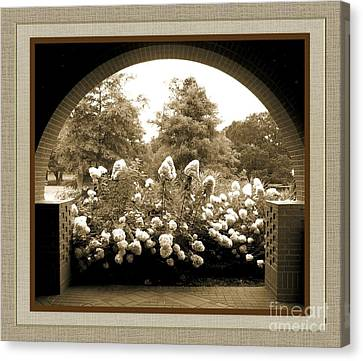 View To The Garden Canvas Print by Darla Wood
