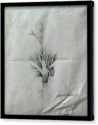 Vine And Branches A 1969 Canvas Print by Glenn Bautista