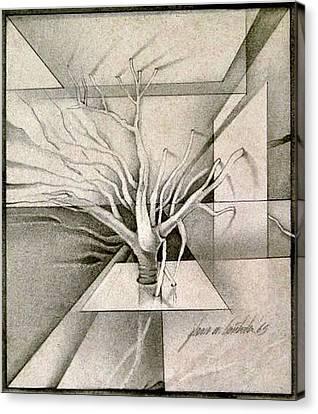 Vine And Branches B 1969 Canvas Print by Glenn Bautista