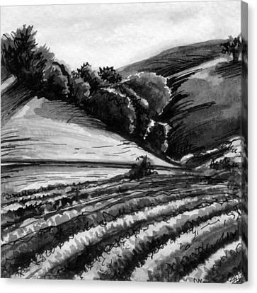 Vineyard Canvas Print by Allison Rogers
