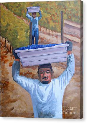 Vineyard Harvest II Canvas Print by Donna Schaffer