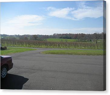 Vineyards In Va - 121230 Canvas Print by DC Photographer