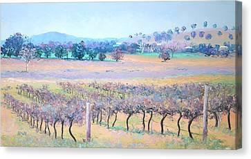 Vineyards Canvas Print by Jan Matson