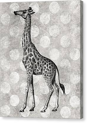 Gray Giraffe Canvas Print by Flo Karp