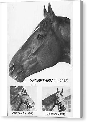 Vintage Horse Racing Head Shots Secretariat Canvas Print by Retro Images Archive
