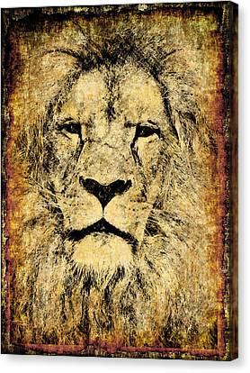 Vintage Lion King Canvas Print by Georgiana Romanovna