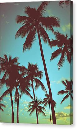 Vintage Tropical Palms Canvas Print by Mr Doomits