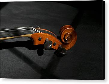 Violin In Shadow Canvas Print by Mark McKinney