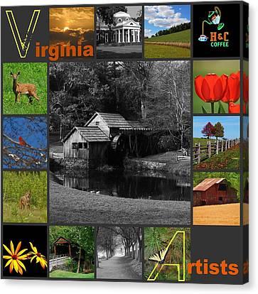 Virginia Artist  Canvas Print by Eric Liller