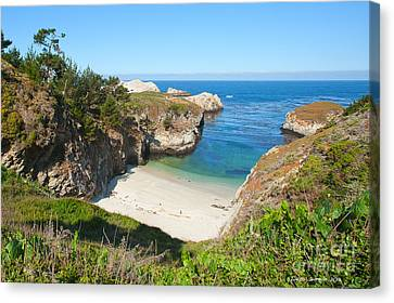 Vista Of China Cove At Point Lobos State Reserve California Canvas Print by Artist and Photographer Laura Wrede