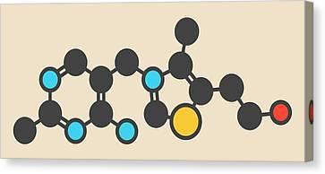 Vitamin B1 Molecule Canvas Print by Molekuul