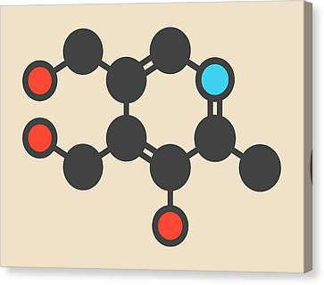 Vitamin B6 Molecule Canvas Print by Molekuul