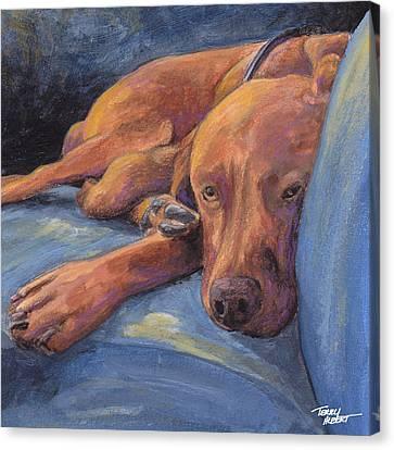 Vizsla Napping Canvas Print by Terry Albert