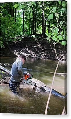 Volunteer Clearing Log Jam Canvas Print by Jim West