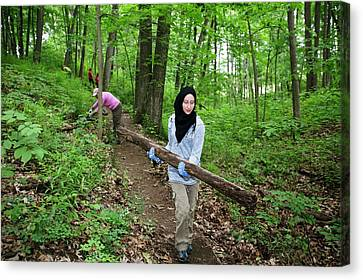 Volunteers Clearing A Woodland Trail Canvas Print by Jim West